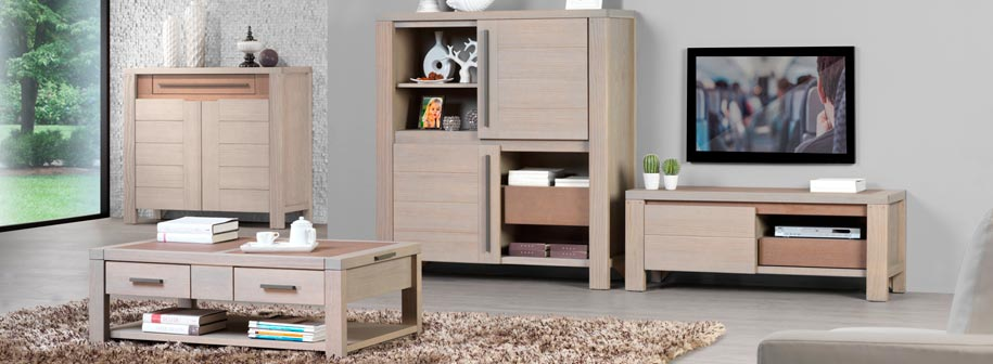 meuble de salon en bois moderne. Black Bedroom Furniture Sets. Home Design Ideas